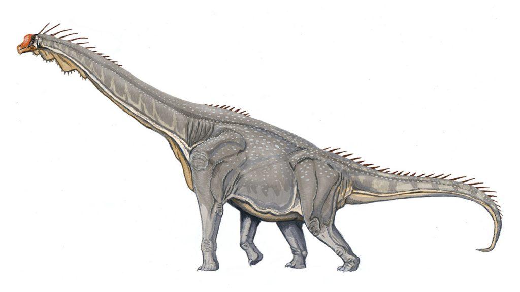 dinosaurios_mas_grandes_brachiosaurus