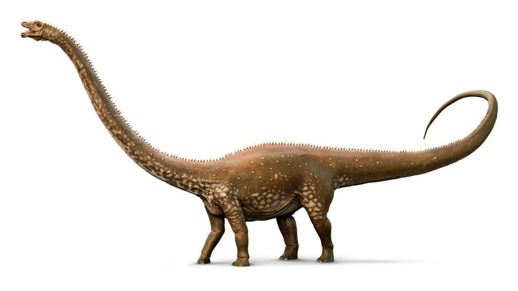 dinosaurios_mas_grandes_diplodocus