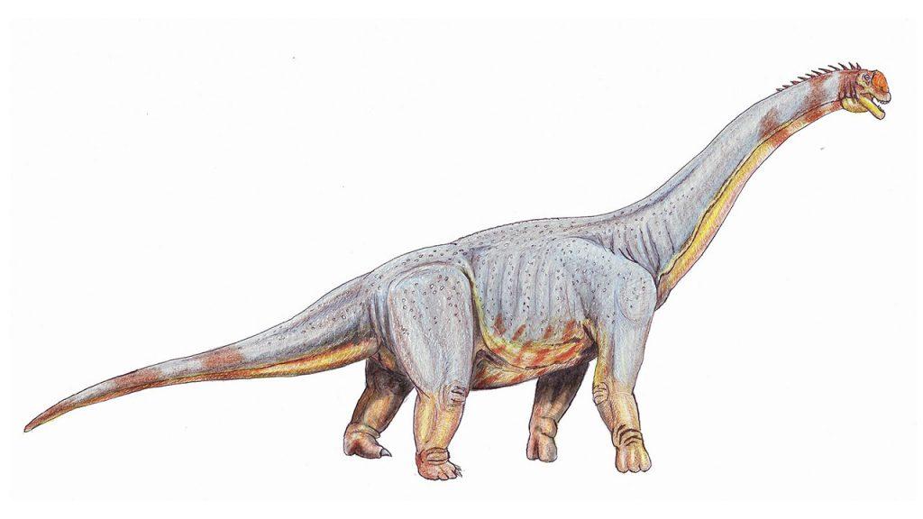 dinosaurios_mas_grandes_paralititan