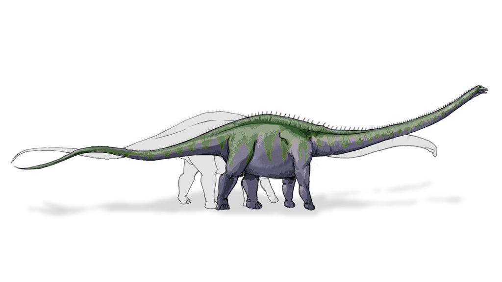dinosaurios_mas_grandes_supersaurus